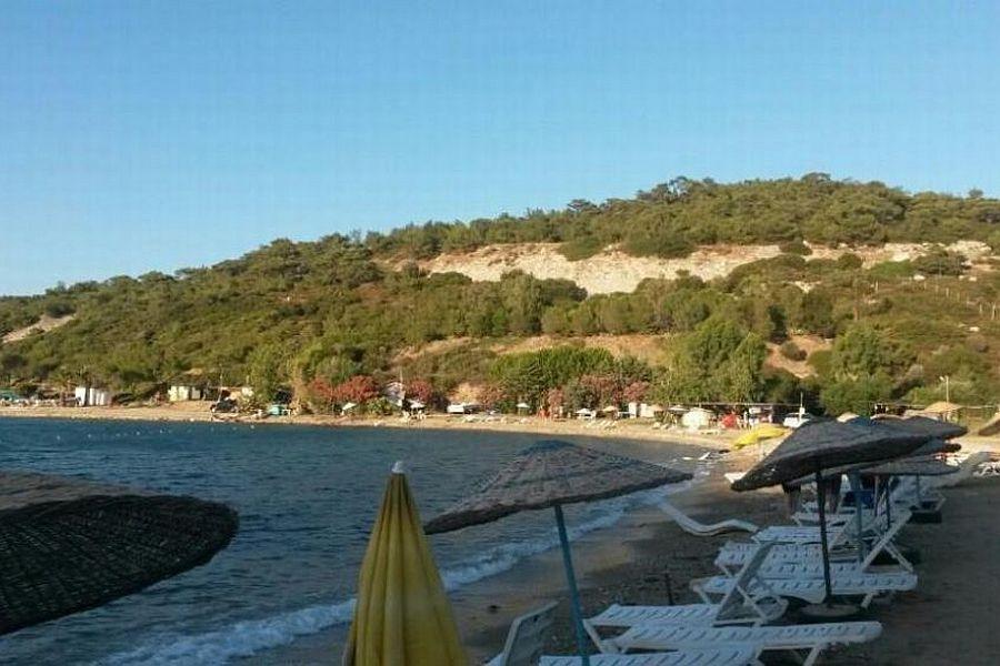 Foça Sazlıca Plajları Kamping